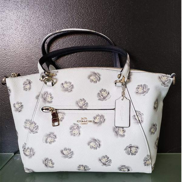 Picture - Coach Purse (Powder Blue) with white glittery flowers